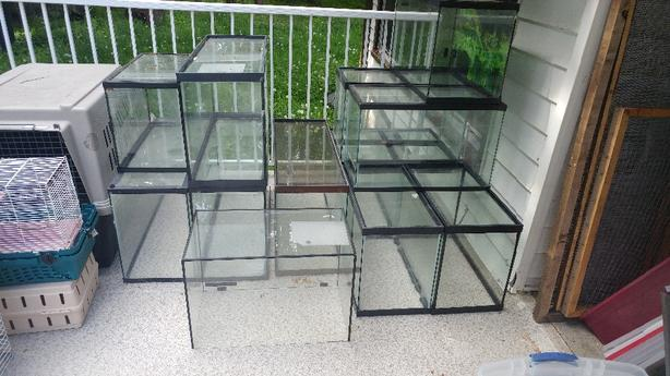 Assorted tanks and screen lids