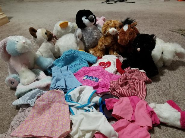 Webkinz Collection with Clothes & Accessories