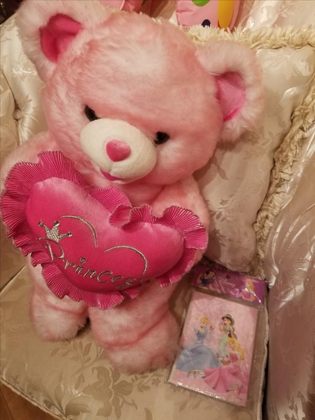 Princess Bear Plush Toy with Disney Photo Album