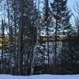 Immense terrain 565 180 pc à Ste-Marguerite-du-Lac-Masson