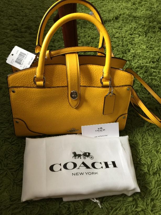 84c5aad8ed46 coach brand new purse or sling bag Saanich