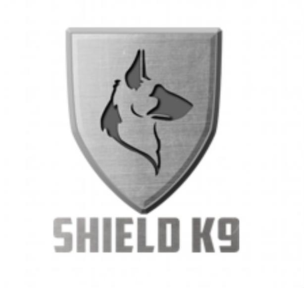 Professional Dog Trainer Burlington | Shield K9
