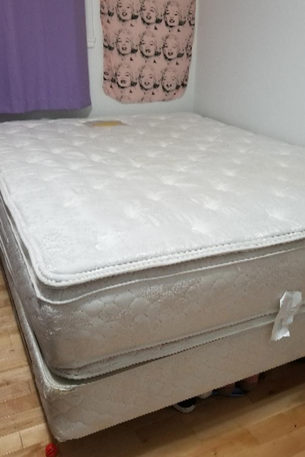 queen size bed (frame & mattress)