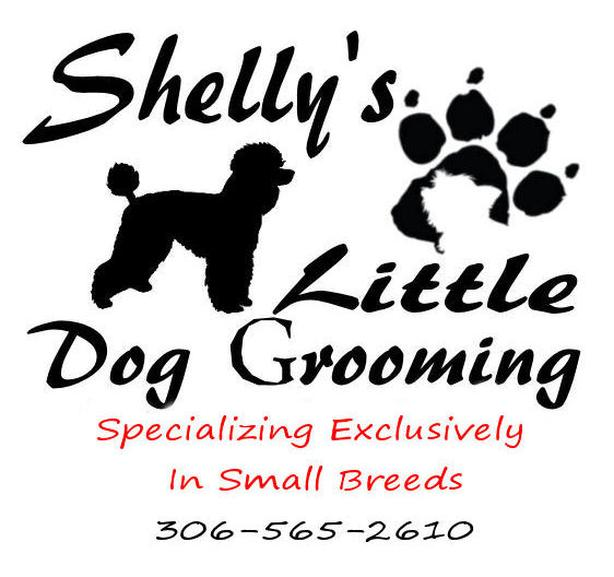 Shelly's Little Dog Grooming