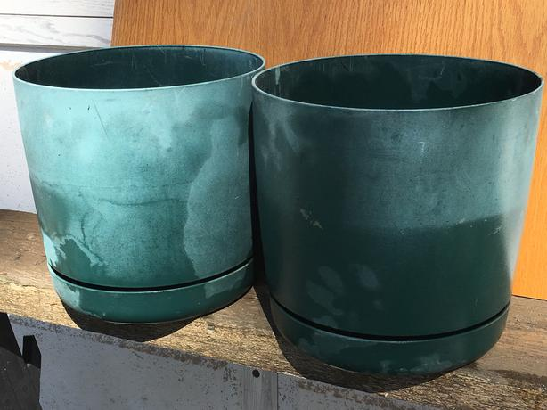 Green Plastic Pots 10 inches tall