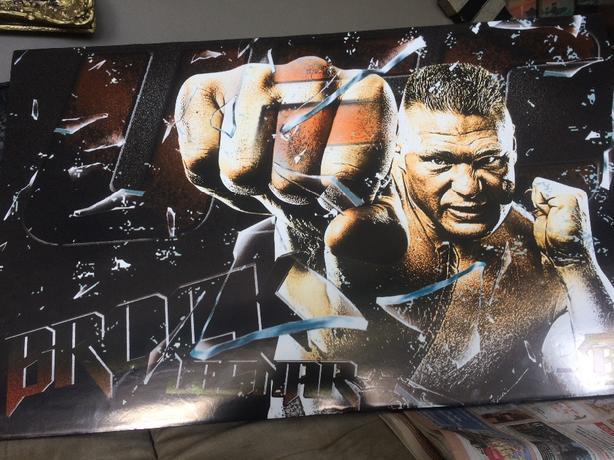 WWE UFC Brock Lesnar WALL MURAL Saanich Victoria