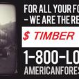 Logging Service, Timber Harvesting Trees  Lewis County Washington