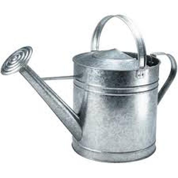Galvanized Metal Watering Can 3L