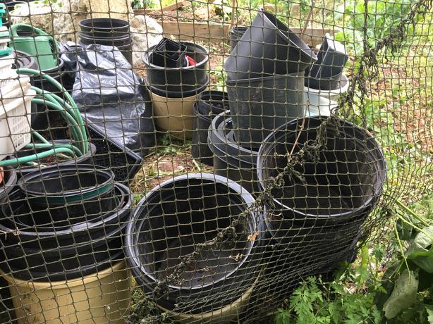 Large amount of garden pots