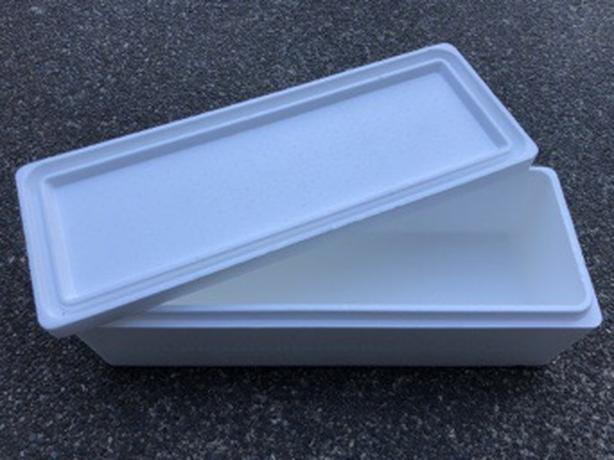Styrofoam Fish Cooler With Lid Central Saanich, Victoria