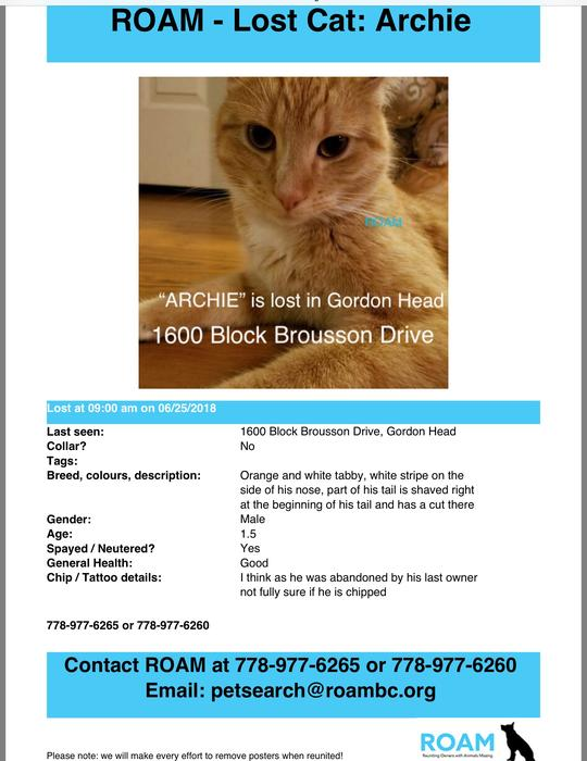 ARCHIE is missing in Gordon Head Saanich, Victoria