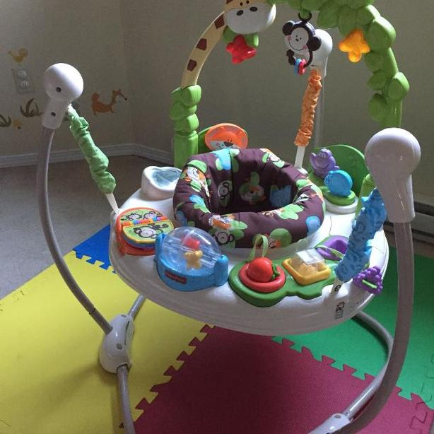 1eb56f0390e9 LIKE NEW FISHER PRICE GO WILD JUMPEROO Saanich