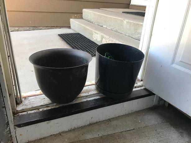 Large flowerpots.