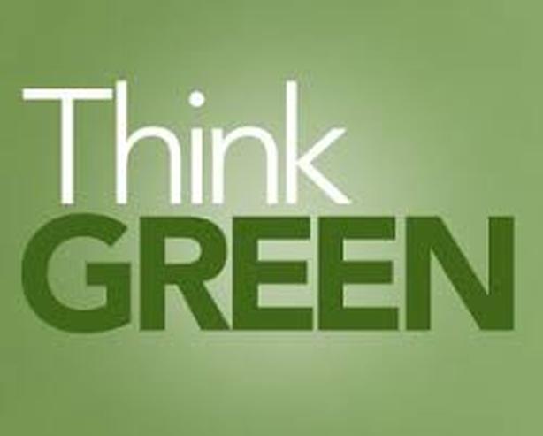 Eco-Friendly Mold Elimination - Go Green