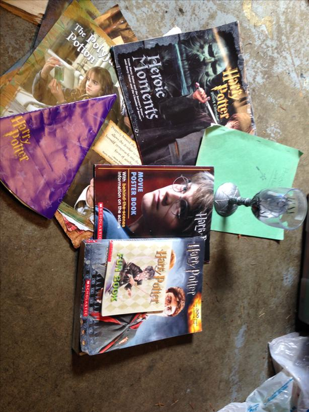 FREE: Harry Potter posters & activity books
