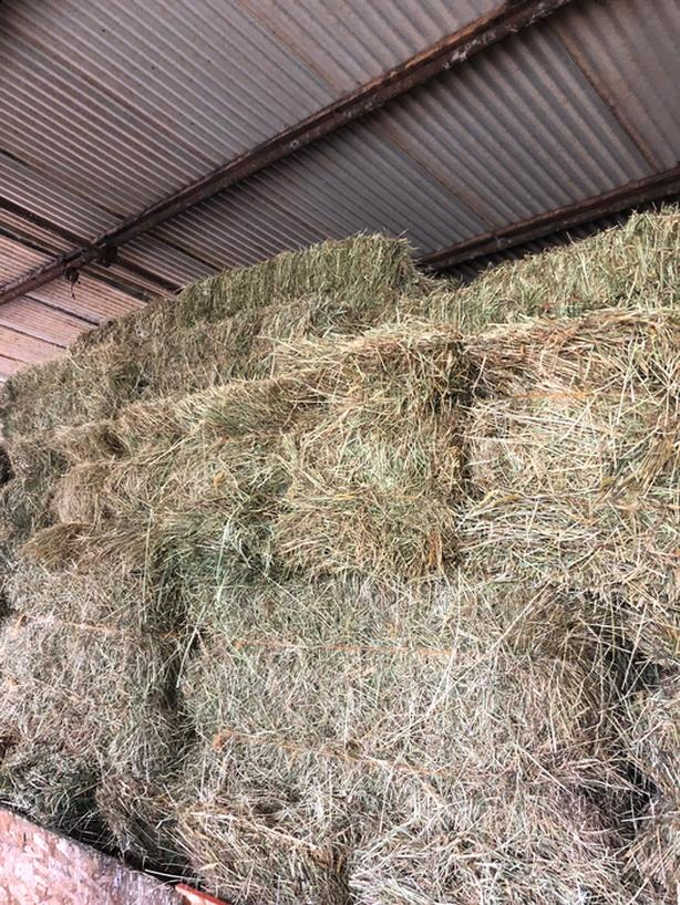 Hay For Sale Out Of The Barn