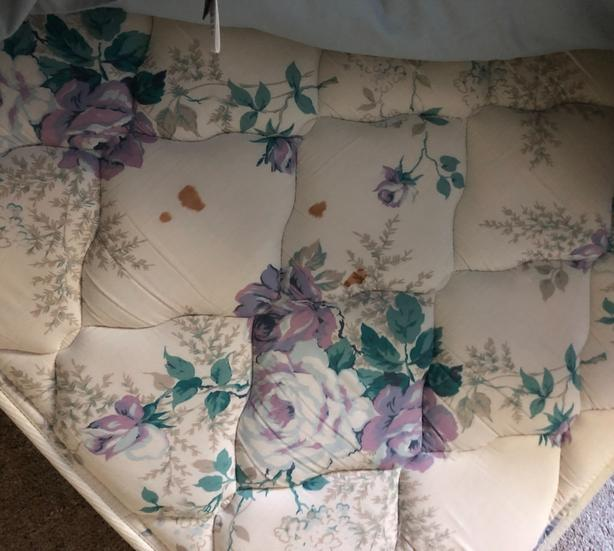 FREE: double matress and box spring