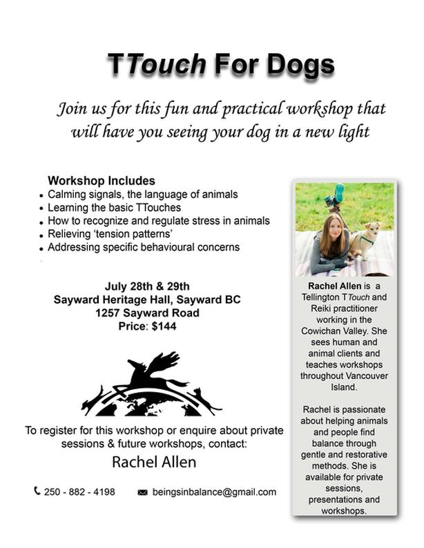 TTouch For Dogs - Sayward