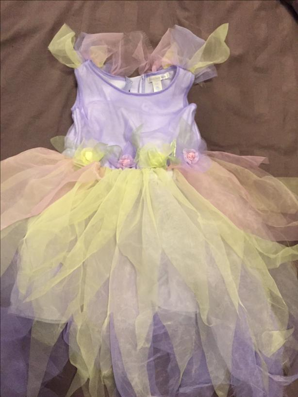 Princess Fairy Dress