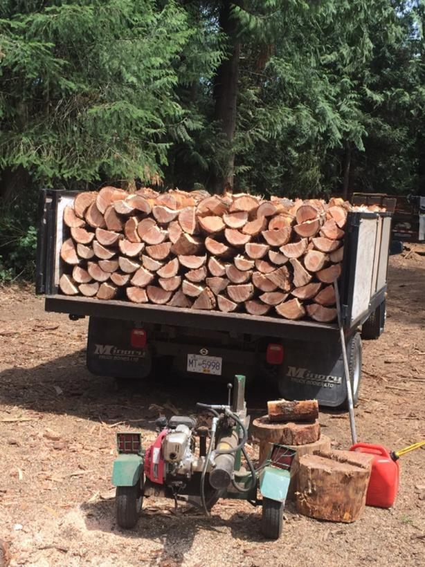Reliable service DOUGLAS FIR ,  arbutus and  maple firewood -
