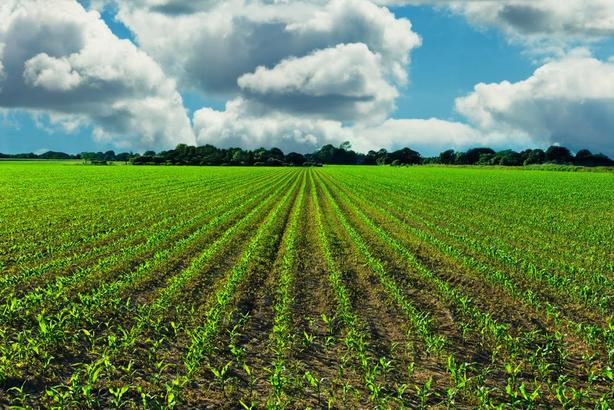 Agricultural Businesses Wanted