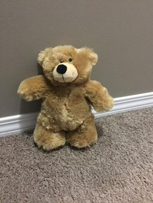 Brown Bear Stuffie