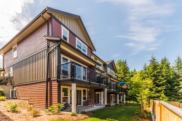 Modern Three Level Townhome in Beautiful Ladysmith!