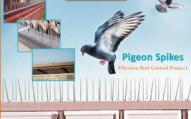 Bird Barrier Netting, Get Ride of Pigeons
