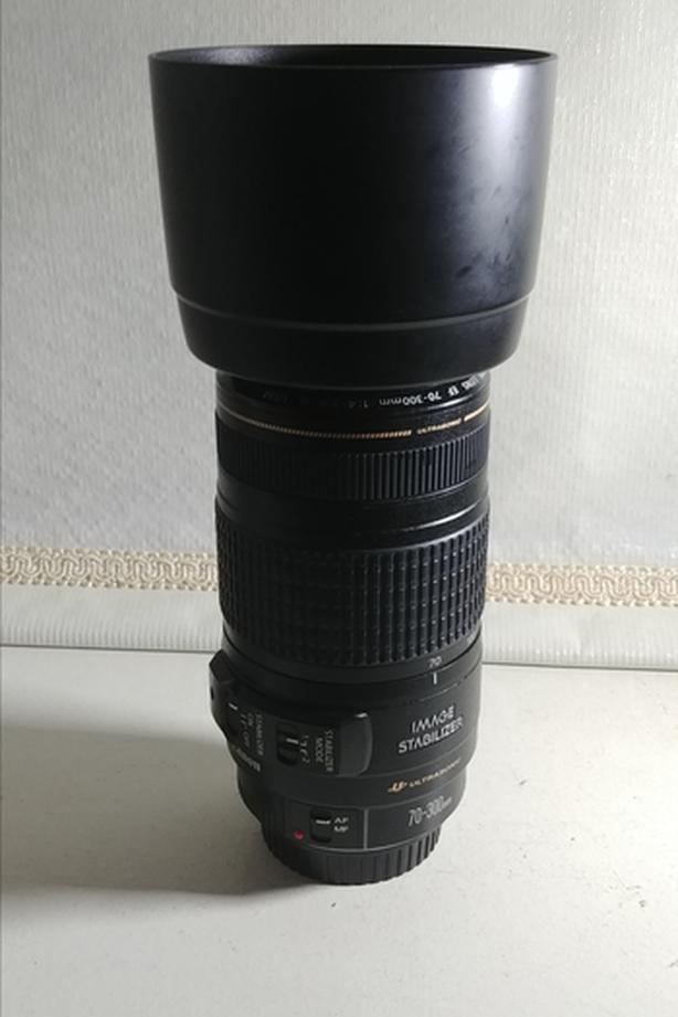 Canon EF 70-300mm f/4-5.6 IS USM with Lens Hood