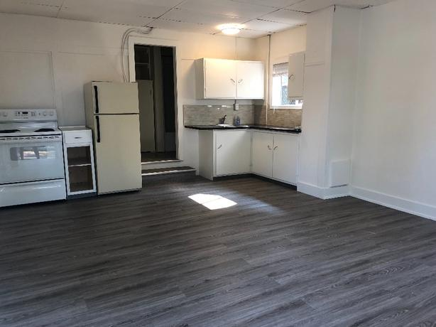 Sparkling clean newly renoed bachelor - walk to downtown