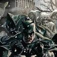 Batman graphic novels (hardcovers)