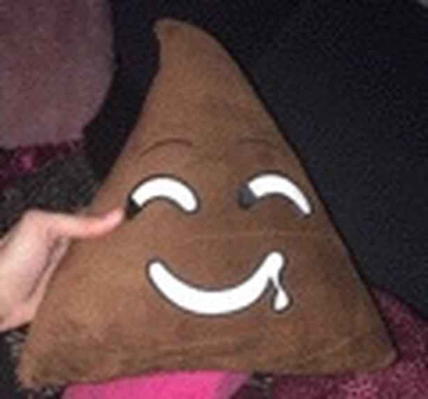 Poop emoji pillows