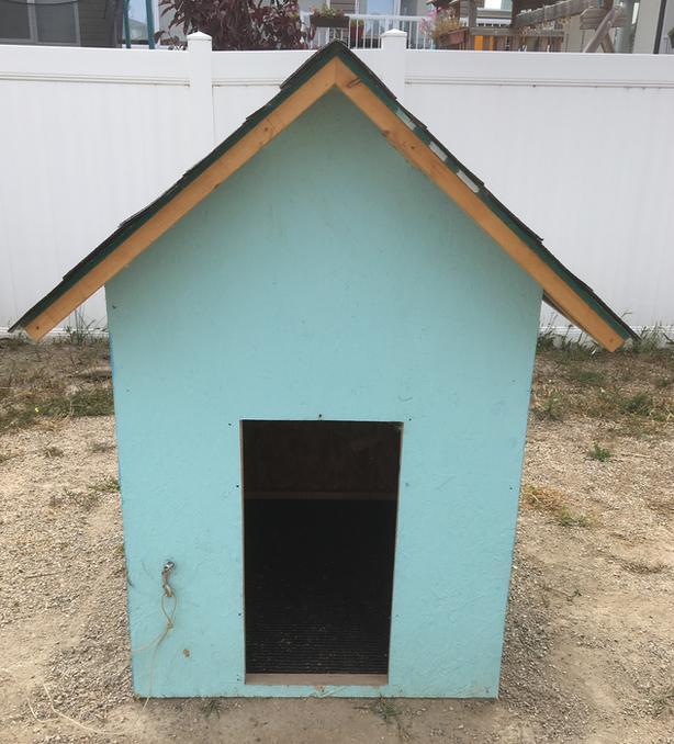 Large Dog Dog House