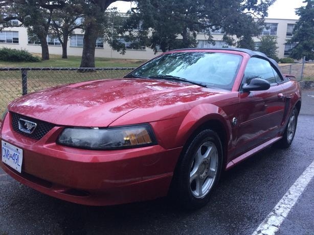 Log In Needed 3 200 Obo 2004 Convertible Mustang V6
