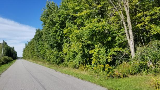 Imagine the possibilities with this country lot with approx 2.3 acres