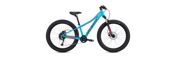 "WANTED: Youth / Boys 24"" Mountain Bike"