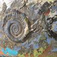 """anu anu"" ORIGINAL Acrylic Gel Painting by Renown Artist Ann-Rosemary Conway"