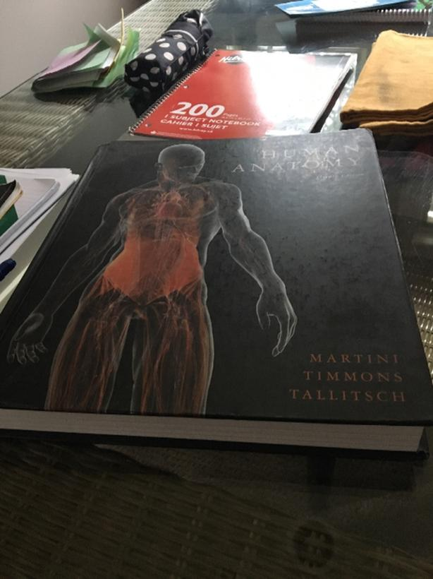 Human Anatomy 7th Edition By Martini Timmons Amp Tallitsch