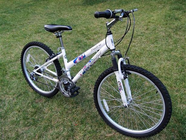 Nakamura Pristine ~ 24-inch Wheels