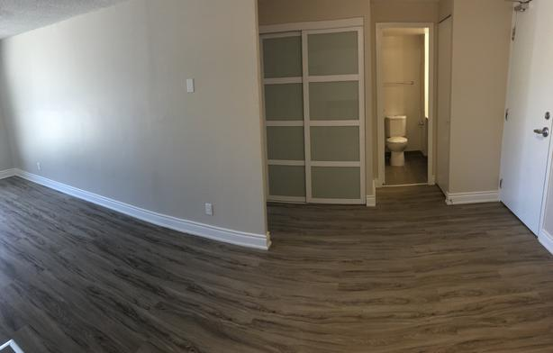 NEWLY RENOVATED 1 bedroom available for November 1st!