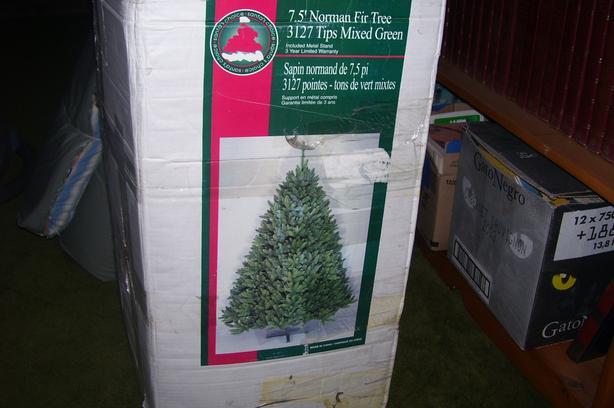 Beautiful Real Looking Christmas Tree
