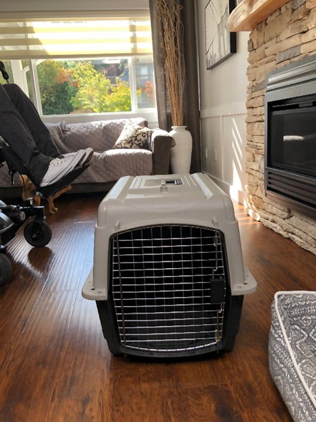 Small to medium sized dog kennel