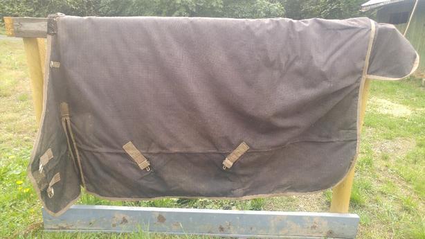 horse blankets!