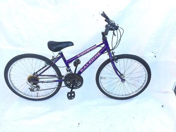 raliegh girls teen , ladies bike