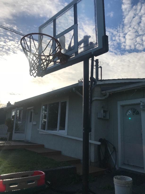 new style 0a8b2 69cc1 reebok basketball hoop