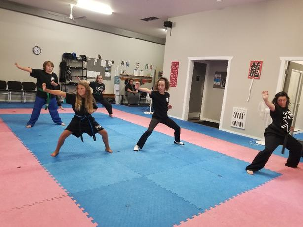 2 for 1 Martial Arts Trial - Family program