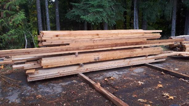 Red Cedar- Old Growth - STK