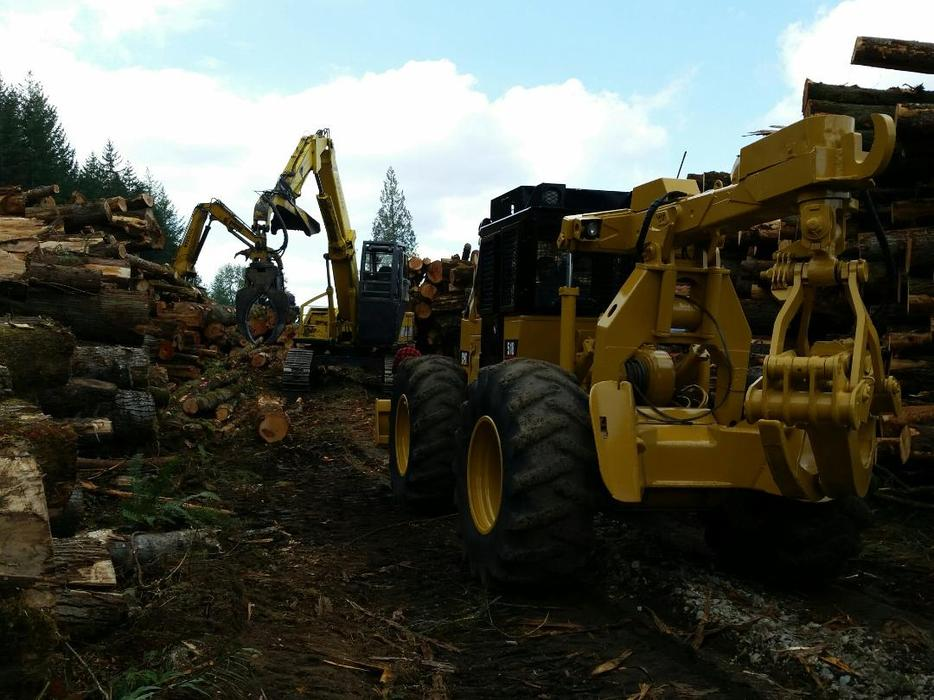 Log Hauling Self Loader Log Truck Logging Timber