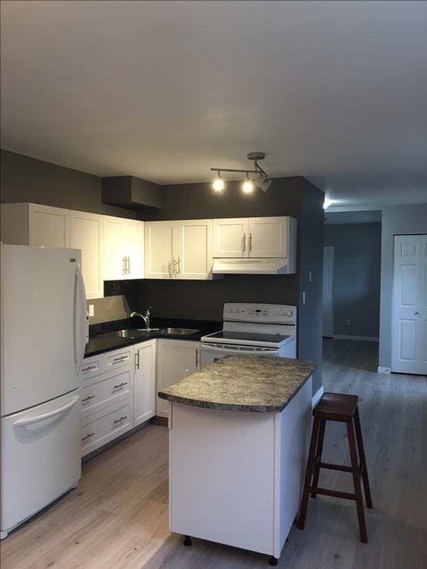 Open concept 1 bedroom suite North Nanaimo