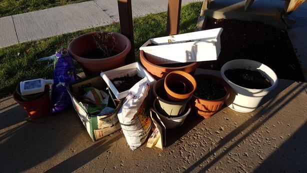 Multiple Pots with potting soil